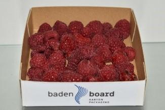 Baden Board saves food